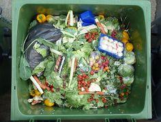 food waste around the world