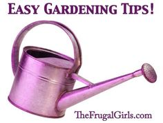 Spring Gardening Tips and Tricks! ~ from TheFrugalGirls.com #gardening