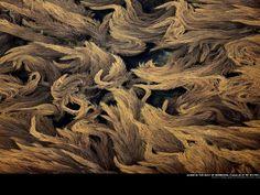 Yann Arthus-Bertrand - algae http://www.thextraordinary.org/yann-arthus-bertrand