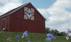 A patriotic bald eagle, trees and pumpkins decorate a Franklin County, Kan., barn.