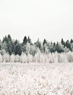 Winter Frost | #DestinationScandinavia #ClubMonaco