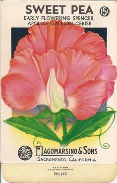 Sweet Magnolias Farm: FREE PRINTABLES