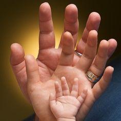 newborn little hands picture