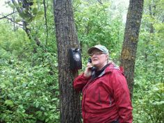Plain sight telephone... in the middle of the forest.  Seems legit. LOL