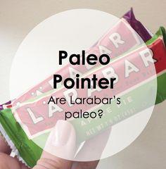 Paleo Pointers: Larabars