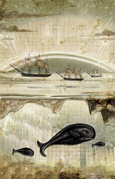 artcollageillustr three, ship print, seas, ships, papers, illustrators, prints, whale, heather landi