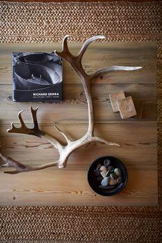 color palett, coffee tables, decor inspir, antlers, hous, beach, homes, michael graydon, antlerhorn stuff