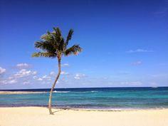 It's the perfect time to getaway. www.TheCoveAtlantis.com  #paradise #Bahamas #Atlantis