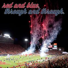 UA Truth #34: You may leave the University of Arizona, but the University of Arizona doesn't leave you.
