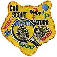 Image result for cub scout csi