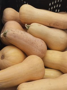 Butternut Squash in