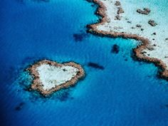Heart-Shaped Reef near Whitsunday Islands, Queensland, Australia