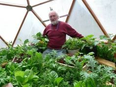 Build a Geodesic Dome Solar Greenhouse to Grow Your Own Food (Slideshow) #DIY
