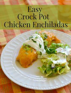 Easy Crock Pot Chicken Enchiladas | http://flouronmyface.com
