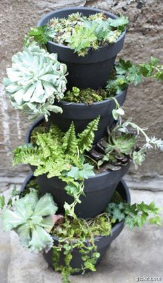 more planter ideas