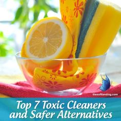 Green Cleaning Guide: Top 7 Toxic Cleaners and Safer Alternatives from thesoftlanding.com