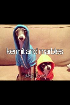 kermit and marbles