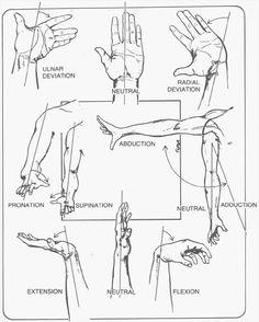 wrist joint movements | eLCOSH : NIOSH Health Hazard Evaluation: Genesis Steel Services, Inc ...