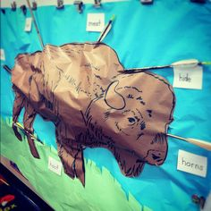 3D buffalo to assit in designing a native American museum in the classroom as a unit of study in first grade