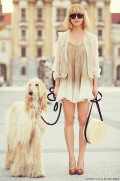 Street Style #caninecouture #dogs #fashion