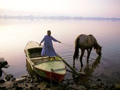 Morning on the Nile