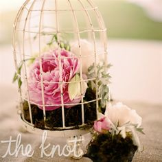 Real Weddings - A Casual Romantic Wedding in Norfolk, VA - Peony and Birdcage Centerpieces