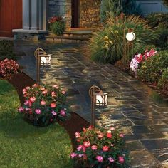 very nice - Love the lighting by the bushy pink flowers. The mulching is interesting.