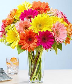 gerber daisies, idea, color schemes, weddings, colors, gerbera daisi, bouquets, fresh flowers, thing
