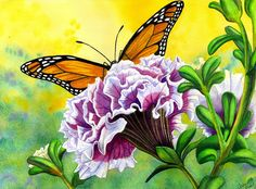Monarch Painting by Catherine G McElroy - Monarch Fine Art Prints and Posters for Sale