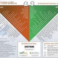 Food Guide.