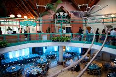St. Louis Zoo Living World Wedding Reception