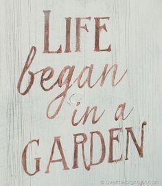 Garden of Eden.