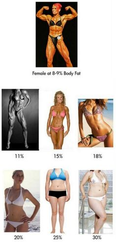 The female body at different %s body fat.