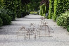 plant belle wire garden supports