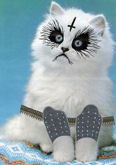 Black Metal Kitty