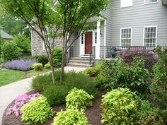 A garden around the front door makes your house a home. : Spring : Richmond VA Landscape Designer: Gardens by Monit, LLC: Monit Rosendale landscape designer Richmond and Charlottesville Virginia and Fredericksburg Virginia and Williamsburg Virginia