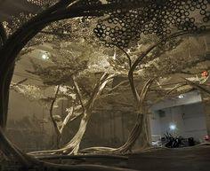 Experimental Design: Tom Price - PP Tree Installation SL