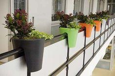 macetas en balcon