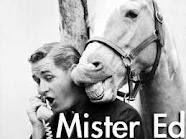 Mr. Ed - the talking horse.