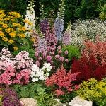 Perennials Made Easy - web site is about easy to grow perennials for all seasons, gardening ideas, and how to plan a perennial flower garden with beds and borders