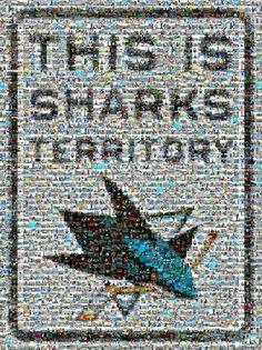 San Jose Sharks