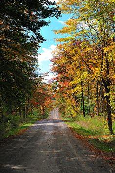 travel road, back roads, road trip, dirt road, countri road