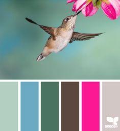 hummingbird hues - voor meer kleurinspiratie en kleurentrends check ook http://www.wonenonline.nl/interieur-inrichten/kleuren-trends-2014/ eens