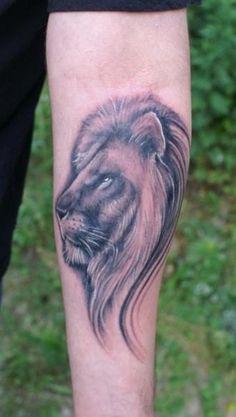 Small Lion Profile
