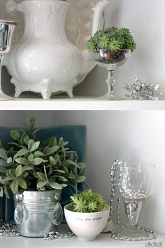 Love all these great ideas for using succulents in the kitchen.  Adding fresh greenery to kitchen shelves