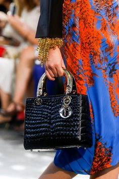 Christian Dior Shoes and Handbags SpringSummer 2014