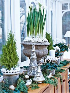 Paper whites in concrete planters, and mercury glass Christmas trees ready this sunporch console table for the holidays.