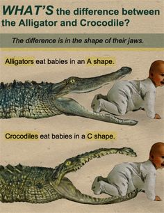 no zombie likes being beaten to his snack by a reptile