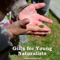 Eco-novice: Gifts that Encourage a Child's Sense of Wonder About Nature