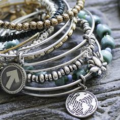 Business Model Integration Category - Alex and Ani's Charity By Design is an entire business line devoted to uniquely crafted bangels with proceeds donated to a variety of nonprofit partners.
